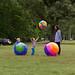 Company picnic-ball