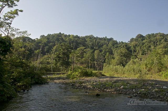 view 0000 Corcovado, Osa peninsula, Costa Rica
