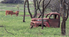 Old farm truck,  Newcastle, Texas