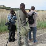 Fotógrafos visitantes a las lagunas de la Guardia (Toledo) 21-5-2017