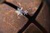 20170108-Snowflake Merge-2.jpg