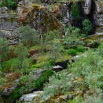 Senderismo. Cascada de Abelón