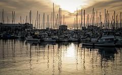 Sunrise at Monterey Marina