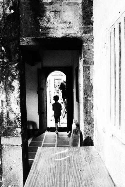 20170602拍攝於南寮057