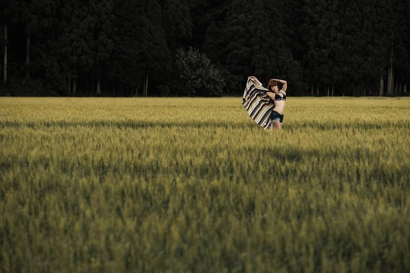 Wheat field ( Mari Shimizu )