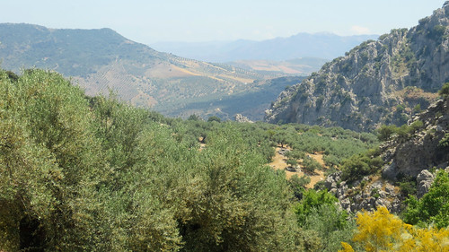 Andalusien_0602