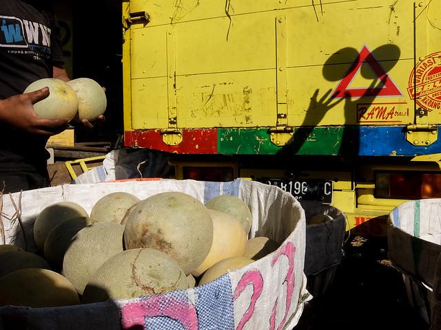 Melons | #08, Fujifilm XQ2