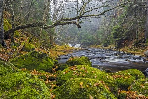 mist fog waterfall ratcliffefalls nb newbrunswick canada