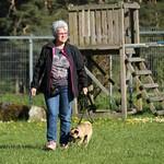 2017-05-10: Kleinhundestunde am Mittwoch Nachmittag