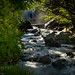 Winnewissa Falls and Pipestone Creek 20170528-_DSC7740