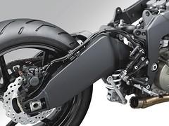 Kawasaki ZX-6 R 636 2013 - 21
