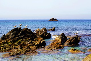 Playa de Calamocarro, Ceuta