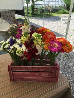 FarmStand Bunches