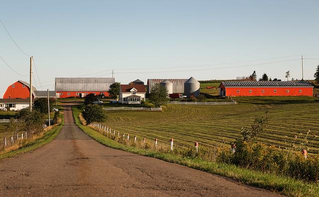 PEI Orange Farm