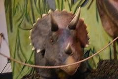 2017 May 30, Dinosaurs at Pink Palace Museum Memphis TN