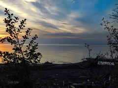 Looking east at sunset - Lake Erie Bluffs