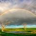 ND Rainbow