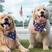 Oshie and Reagan Memorial Day