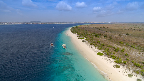 nature allgemein tauchen natur sea aerial photography kamera summer drone ocean strandurluab drohne reisen luftbild sommer photo curacao dronesdaily outdoor ferien beach holiday strand bonaire geotagged underwater diving island dive insel travel dji aerialphotography kralendijk besonderegemeinde bq