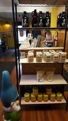 Pint Sized; Coffee on Lark Street, Albany, NY