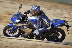 Yamaha 300 YZF-R3 2015 - 18