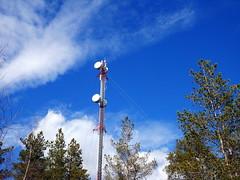 Mobile phone mast antenna