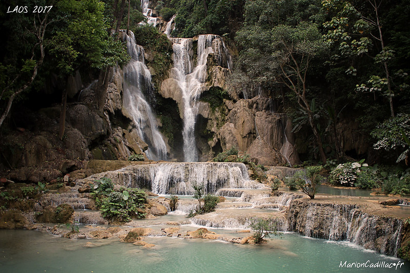 From Laos © MC