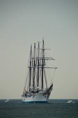 Sail Den Helder (2017)