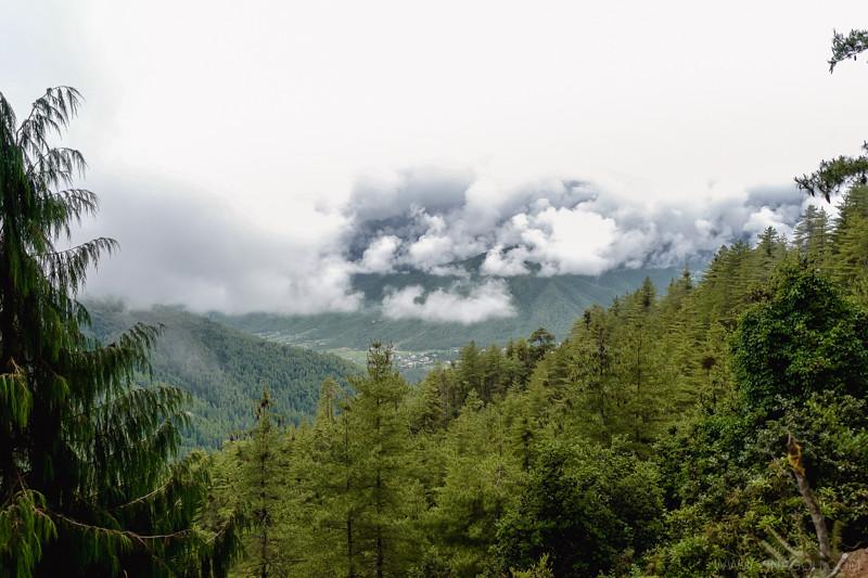 Sketch-Bhutan-Drukasia-Travel-145