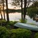 Boat in greenery by - David Olsson -