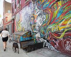 JMZ Walls Mural (2017) by Marcelo Ment, Bushwick, Brooklyn, New York City