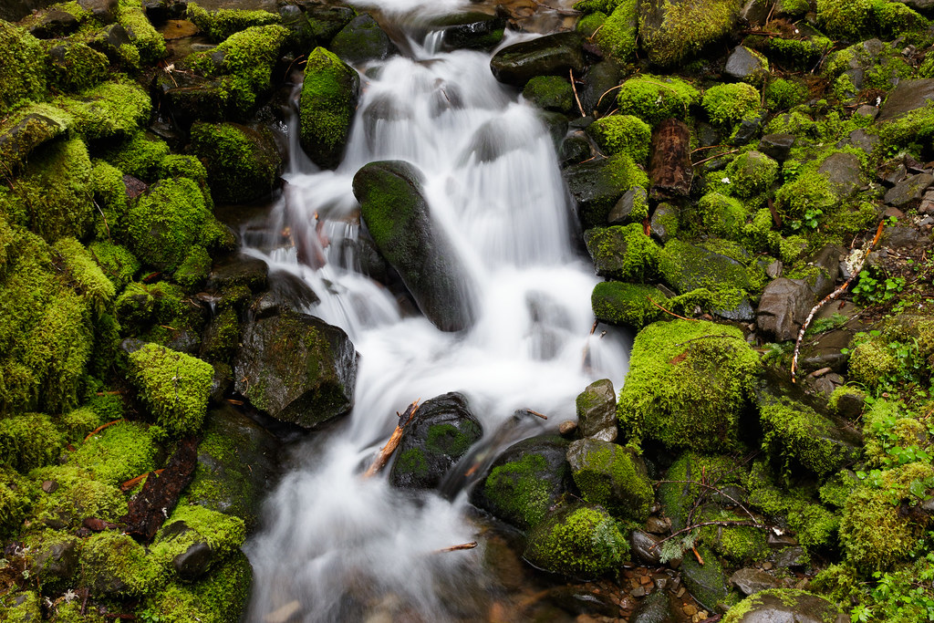A stream flows down past moss-covered rocks