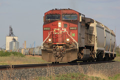 Canadian Pacific #8602  - Curve out of town