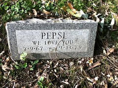 Pepsi at Hartsdale Pet Cemetery.