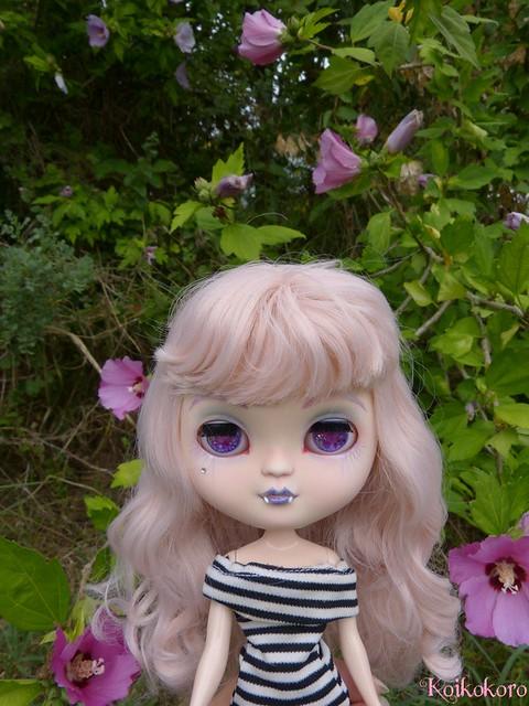 Les Vinyls de Koikokoro~Ileana, little vampire (Icydoll) - Page 2 35487478120_e92bc7e106_z