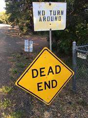 Signs, Signs, Everywhere Sings
