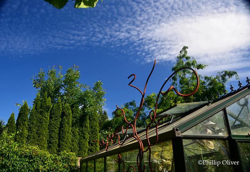 Wisner/Orloff garden (Sauvie Island, OR)