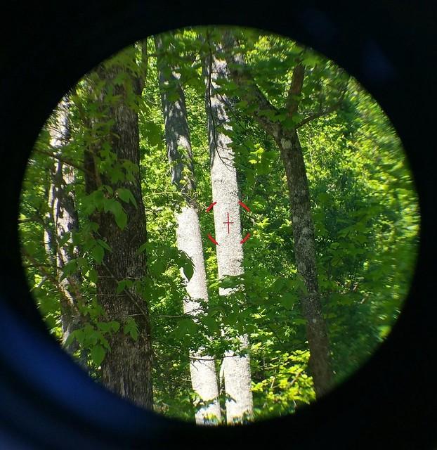 3x30 & 45 degree sights5