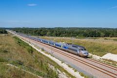 04 juillet 2017  TGV A 403-311  Train 8545 Paris -> Irun  Cézac (33) - Photo of Cavignac
