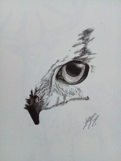 Ojo aguila tattoo