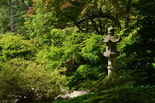 brooklynbotanicgarden japanesehillandpondgarden toroseries tōrō toro