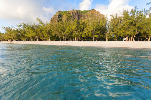 jungle dauphins sand morne terredes7couleurs portlouis surf indianocean canneàsucre snorkeling beach ocean waterfall fruits tamarin chamarel fisherman pool market sunset bluebay chutedeau pêcheur troudeaudouce breakfast boats boischéri dolfins sugarcane sea montchoisy lagaulette mornebrabant sega pointedesny bazar baie mauritius surfer starfish maurice étoiledemer thé îleauxbénitiers îleauxcerfs routeduthé