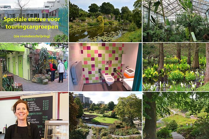 Utrecht-Botanische-Tuinen-21