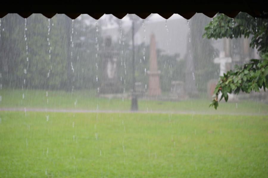 fort-canning-rain4