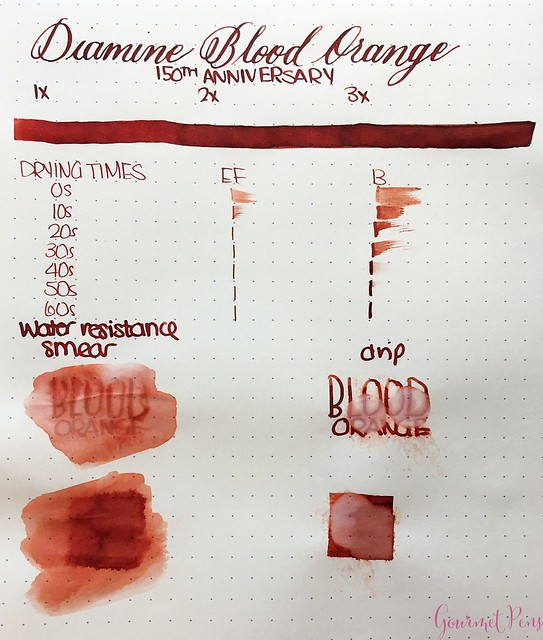Ink Shot Review Diamine Anniversary Blood Orange @AppelboomLaren 2