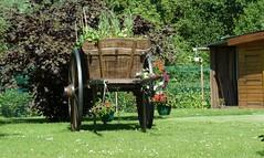 Amiens les hortillonnages  autour du vert-galand (2)