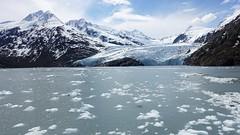 Portage Glacier Cruise in Girdwood, Alaska.