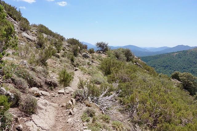 Hot trail through dusty maquis scrub