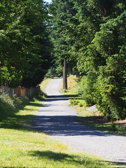 Cedar to Green River Trail