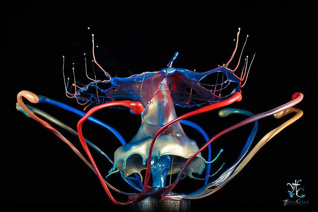 0807 - liquid art